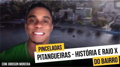 Photo of Pitangueiras – história e curiosidades do bairro